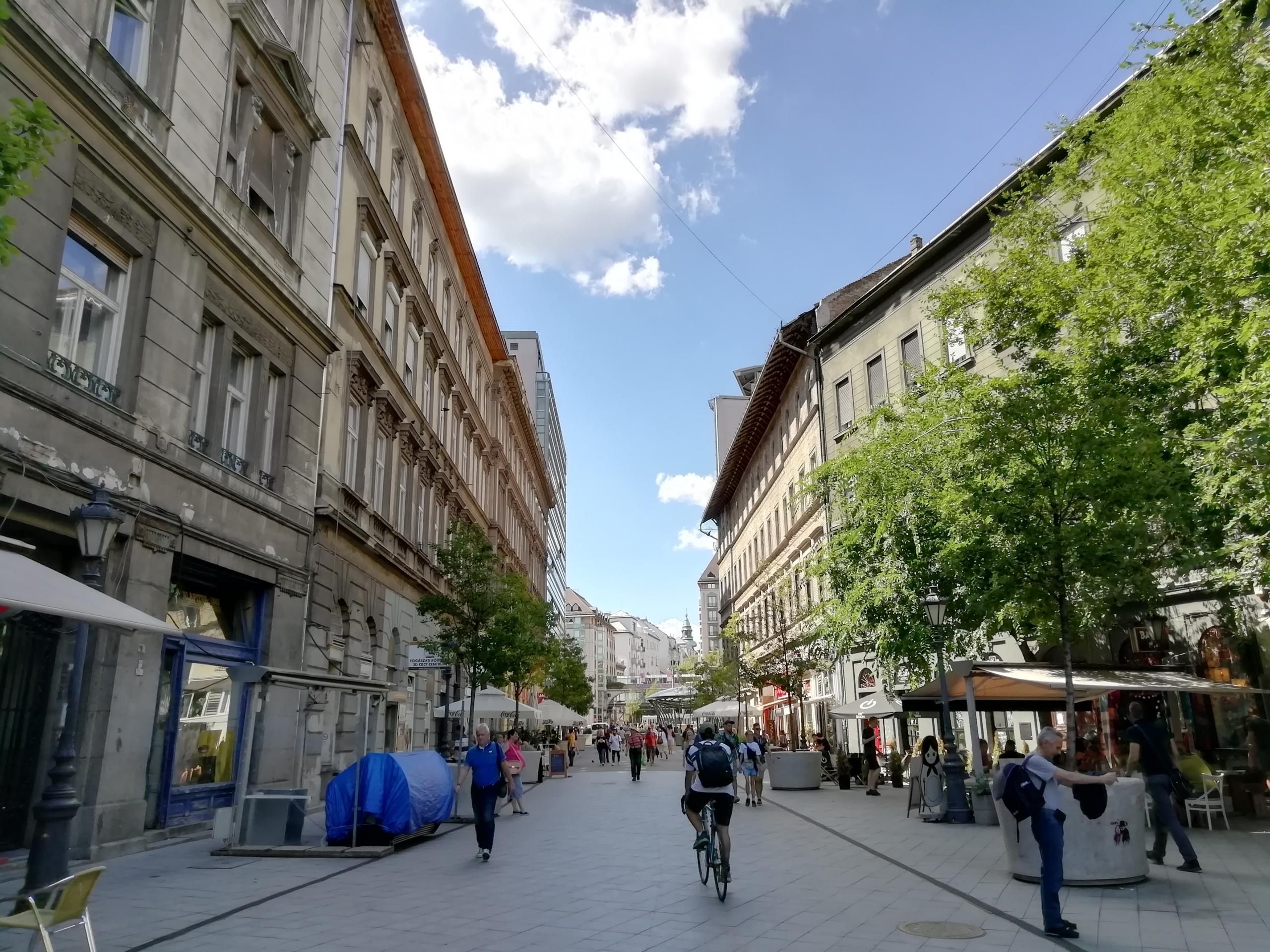 Ön hogyan képzeli el a zöld Józsefvárost 2035-ben?